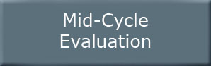 Mid-Cycle Evaluation Button