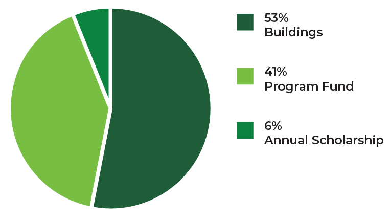 pie chart in 3 segments - 53% buildings, 41% program fund, 6% annual scholarship