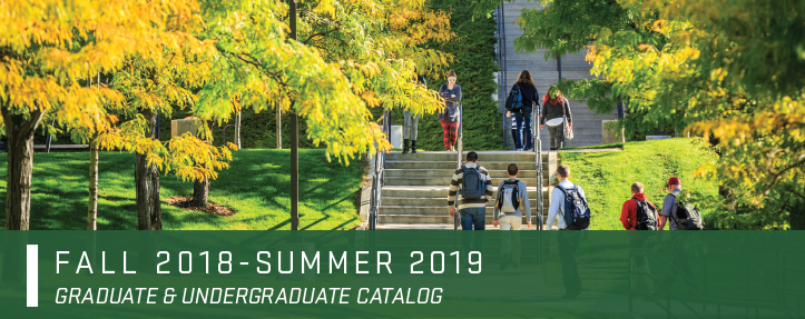 UVU Catalog banner image - students walking up stairs on UVU Campus.