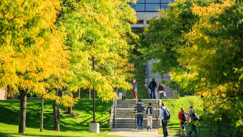 Students walking under trees on UVU campus.