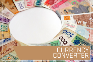 Currency Converter. Image of different currency in a circle