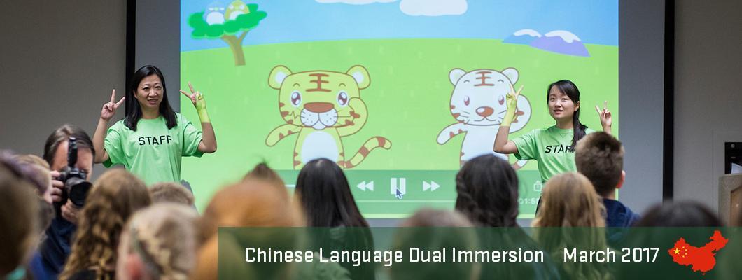 Chinese DLI Fair