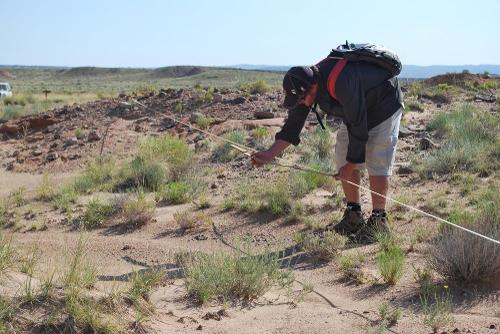 Matt Want surveying plants at Capitol Reef National Park