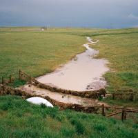 photo of a river in a grassy field