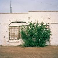 photo of a house with a bush in front
