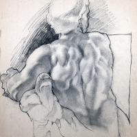 drawing of a muscular back