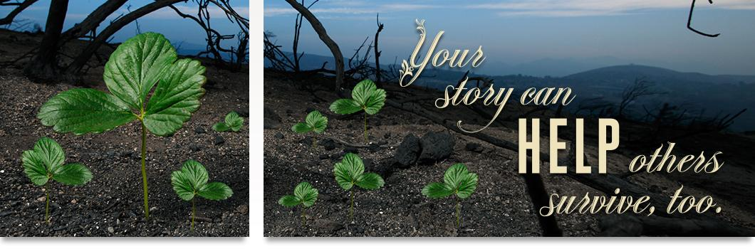 """Burned forest area with tiny seedlings growing in the charred soil. """"Your story can help others survive, tool"""""""