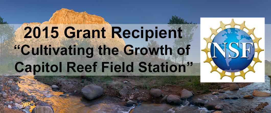 NSF Grant Award