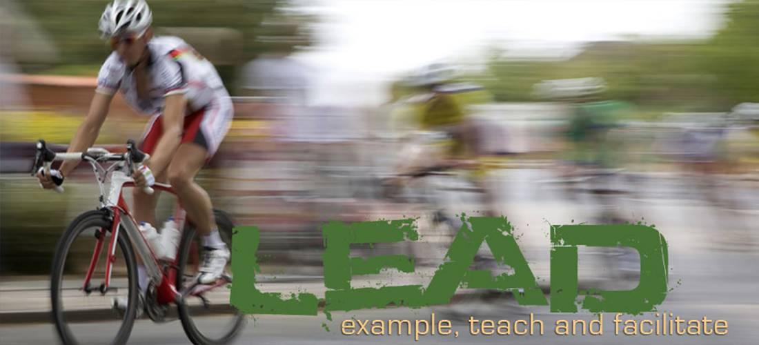 example, teach, and facilitate Lead