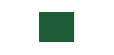 Branding | University Marketing | Utah Valley University