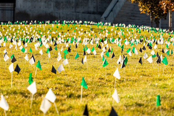 Thousands of small green, black, and white flags planted across UVU's courtyard.