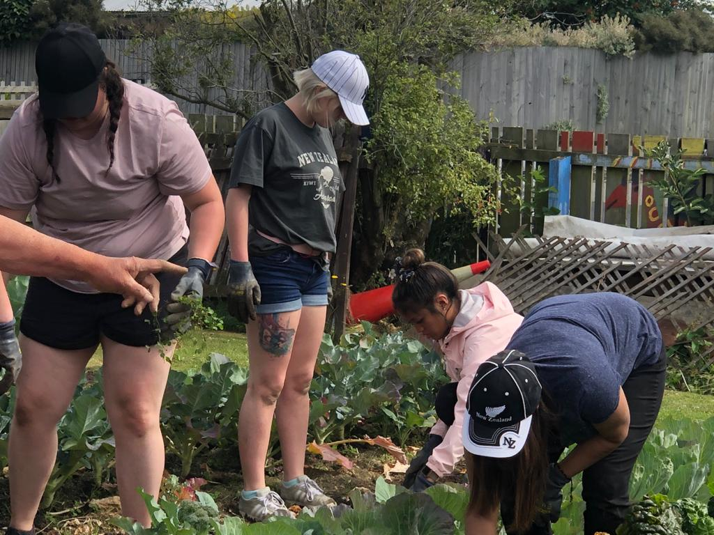UVU students engage in service learning in Christchurch, New Zealand, by working on a community garden planted in the aftermath of the major earthquakes. The garden was planted as a way of pulling the community together and provide healing to the citizens after the earthquakes of 2010 and 2011.