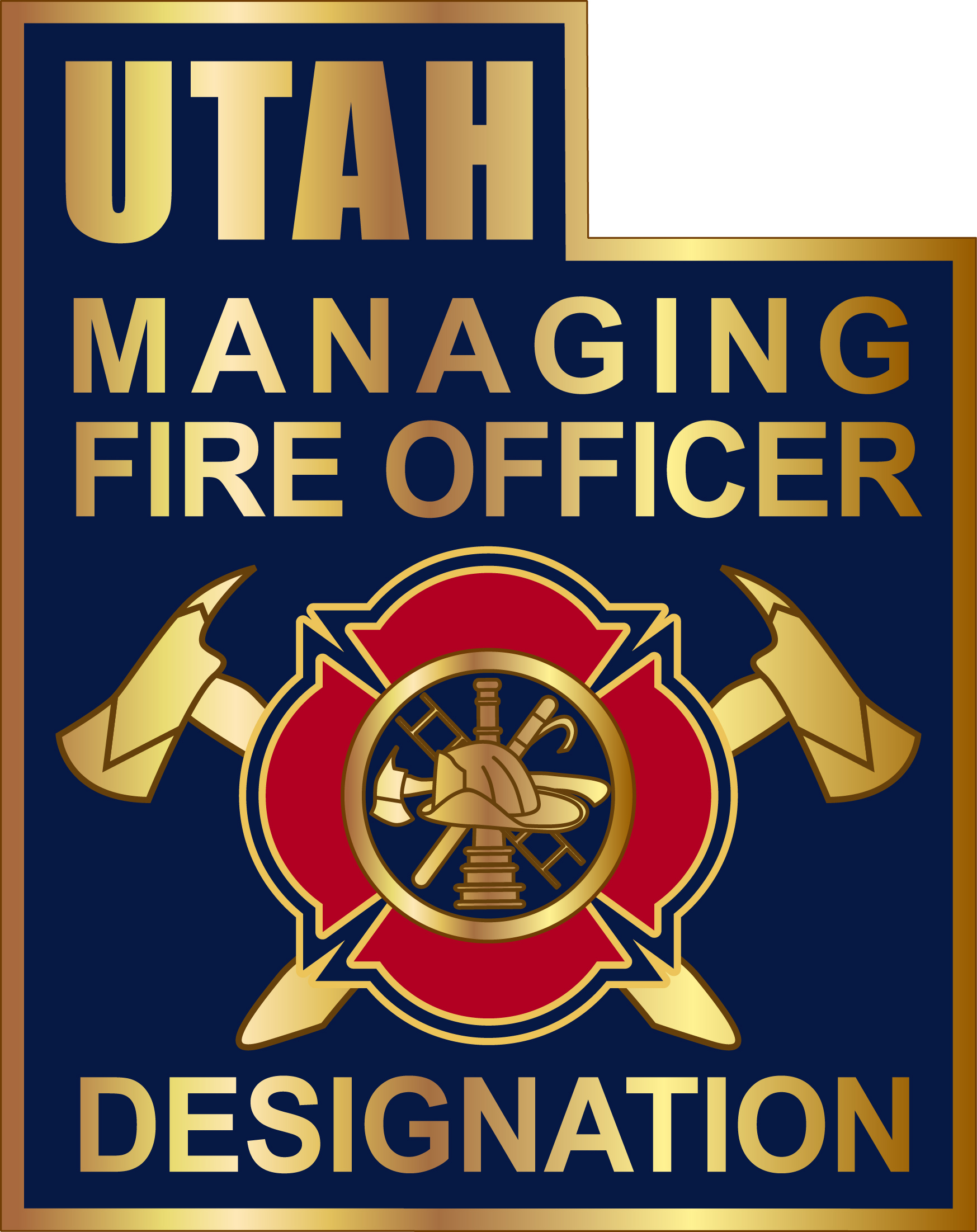 Managing Fire Officer lapel pin