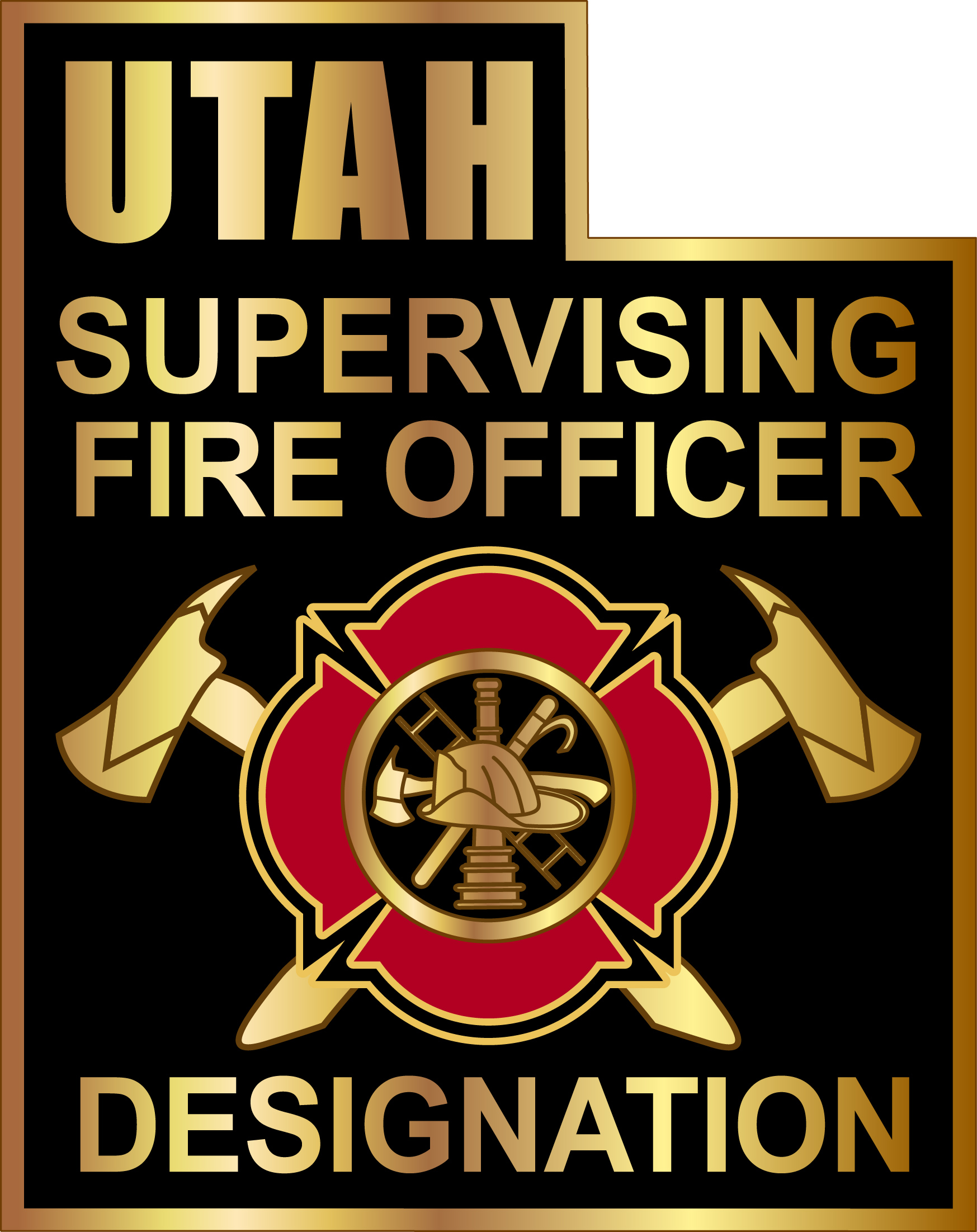 Supervising Fire Officer lapel pin